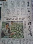 植木のスイカ〜熊日新聞