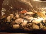 サロマ湖 芭露産の牡蠣-3